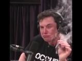Раскрыт секрет того, как Илон Маск придумал запустить Tesla в космос
