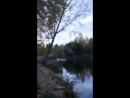 илек рыбалка тишина природа и зумрад