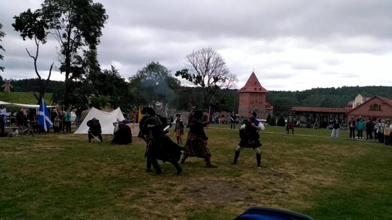 Бой викинговСула