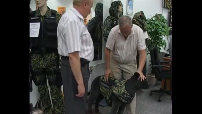 Репортаж канала Рен ТВ о бронежилете для служебных собак НОРД