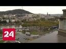 Глубоко копнула: в Тбилиси задержан хакер, подозреваемый в убийстве следователя Шишкиной - Россия 24