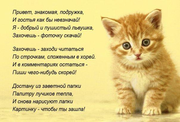 http://cs832.vkontakte.ru/u27322698/118288325/x_d03c3362.jpg