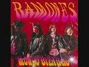 Take It as It Comes Ramones Lyrics