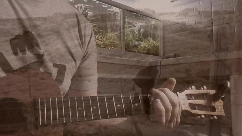 Виктор Цой - Кукушка (укулеле кавер в плюс)