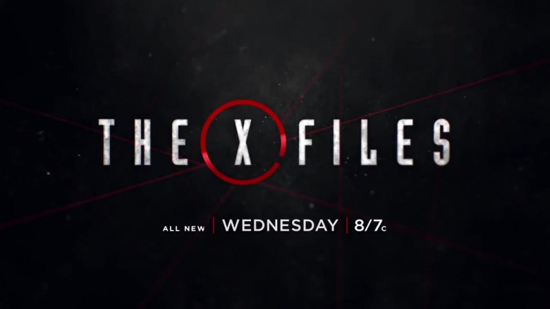 The X-Files 11x06 Promo Kitten (HD)