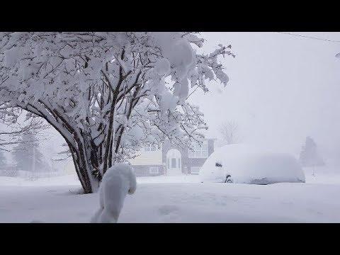 За несколько дней до лета Канаду засыпало снегом Snow in Gander Canada 24 05 2018
