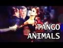 Tango - Animals