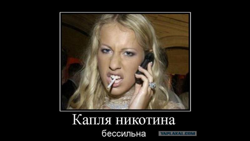 "Dossier : _ собчачка - будущая ""президентша"" России 2018"