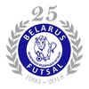 Финал XXIII кубка Беларуси по футзалу
