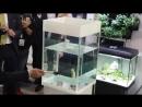 Фирма Акваэль представила систему безопасности аквариума! Aquael GLOSSY WHITE Safe System