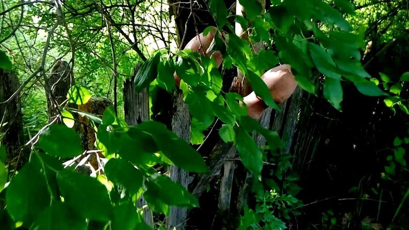 Старинные кувшины на заборе.