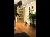 Sheila y gatos ❤?