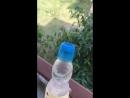 Необычная бутылка