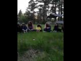 огонёк с друзьями фокси кэмп