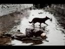 «Сталкер», 1979   Режиссер: Андрей Тарковский | притча