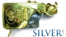 How to Test for Fake Silver Gold Bullion INFOGRAPHIC by Silver