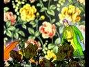 Сагит Гыйбашев Ты красивее всех
