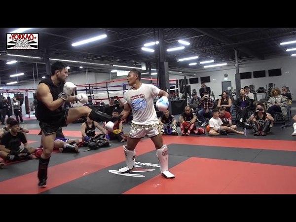 Saenchai in Canada - YOKKAO Muay Thai Seminar in Toronto