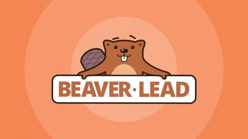 Digital Агентство Beaver-Lead