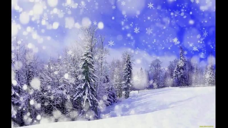 Звуки зимнего леса- пурга, метель, ветер, снегопад_HD