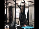 ANNA NYSTROM |  | Фитнес модель, тренировки, спорт,занятие спортом