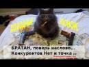 Активные продажи по телефону Конкурентов Нет ру