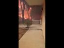 В эпицентре пожара Аттика Греция 23 июля 2018