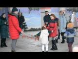 Вот такие веселые предновогодние дни устроили для детей в Новой Каховке!