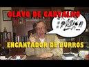Olavo de Carvalho Farsa ou Mito?