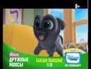 Премьера мультсериала «Дружные мопсы» — только на Канале Disney! (0 )