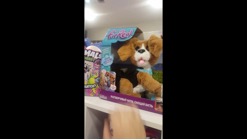 Разговорчивый Чарли лающий бигль FurReal Friends от Hasbro1