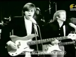 08  The Beach Boys - Good Vibrations