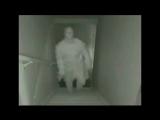 Очень страшное видео. Не для слабонервных!!!