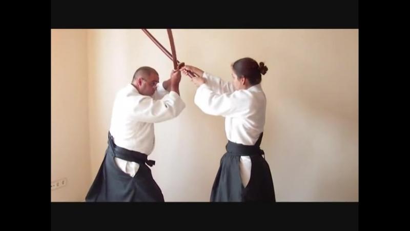 Ogawa Ryu Kenjutsu Toritake - Seiteigata - Roppon Me