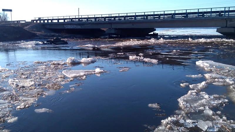 Лёд тронулся