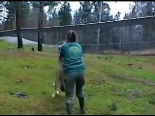 Дрессировщица волков (6 sec)