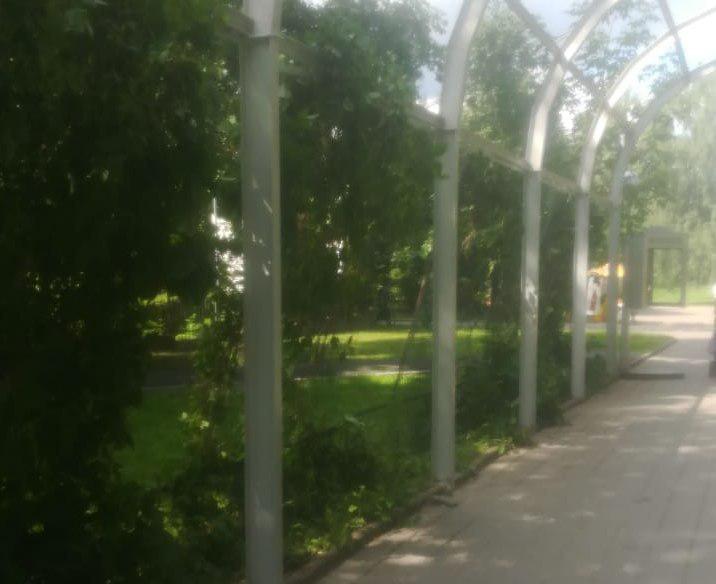 Арки привели в порядок в Лианозовском парке