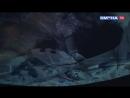 Как стать ближе к звездам- Сменовцы посетили планетарий