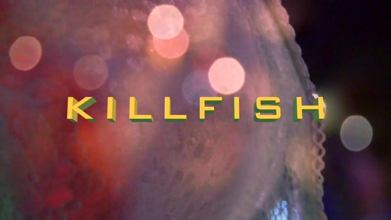 KILLFISH vk.comkillfishtyumenrepublic г Тюмень