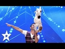 Acrobat Dogs have some SERIOUS Skills! | Auditions Week 2 | Românii au talent