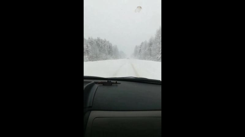 в Новгородской зима