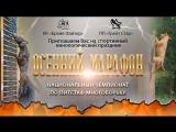 Дисциплина Wall jump на соревнованиях Спортивный кинологический праздник ОСЕННИЙ МАРАФОН 2017