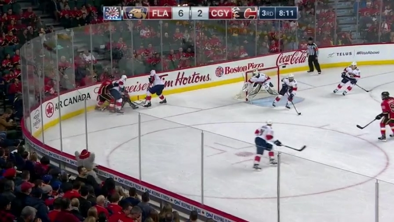 Panthers vs. Flames 6-3 (17/2/18)