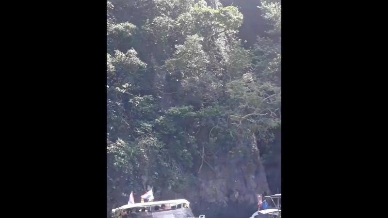 остров обязьян🐒🐒 Тайланд