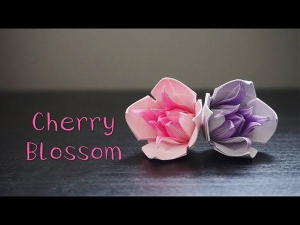Origami Tutorial: Cherry Blossom (Pham Hoang Hai)|Hello Malinda