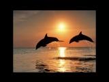 Поль Мориа - (саксофон) Красота моря