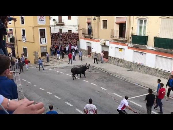 Toro Cogida Impactante | Toros Ontinyent 2018 |
