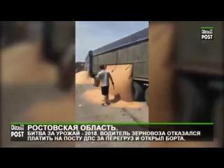 Водитель зерновоза отказался платить штраф на посту ДПС за перегруз и высыпал зе