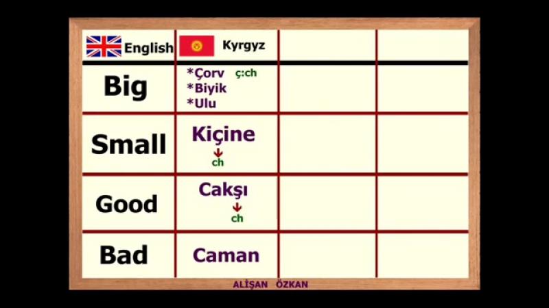 Türk Dili Karşılaştırmaları