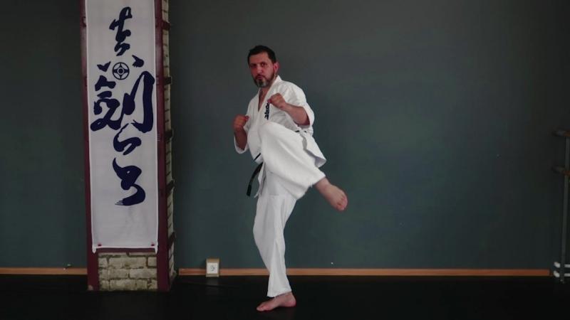 Маваши гери / круговой удар